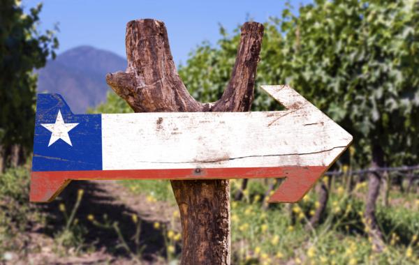 40% rabat på vin fra Chile
